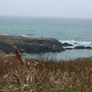 São Pedro e Miquelon